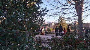 Vue de l'Alhambra depuis les jardins de la Grande Mosquée de Granada