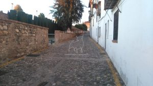 Rue du quartier Albaycín